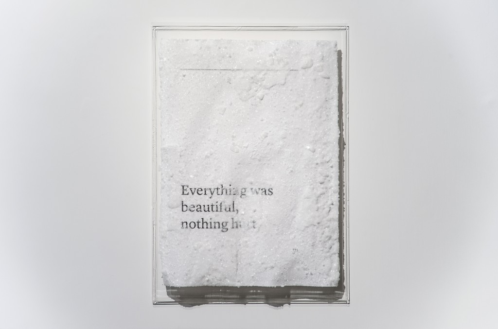 Cedric Maridet_Everything was beautiful, nothing hurt 2